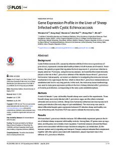 Gene Expression Profile in the Liver of Sheep ... - Semantic Scholar