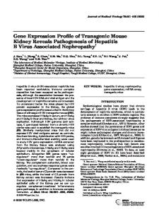 Gene expression profile of transgenic mouse ... - Wiley Online Library