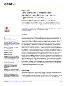 Gene expression to mitochondrial metabolism: Variability ... - PLOS