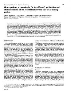 Gene synthesis, expression in Escherichia coli, purification and ... - NCBI