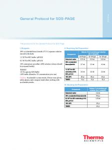 General Protocol for SDS-PAGE