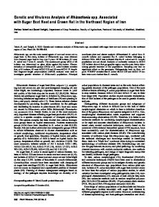 Genetic and Virulence Analysis of Rhizoctonia spp. Associated with ...