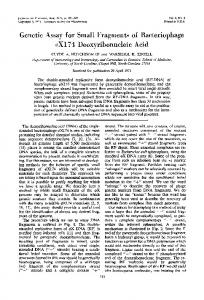 Genetic Assay for Small Fragments of ... - Journal of Virology