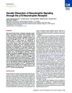 Genetic Dissection of Neurotrophin Signaling through the p75 ...