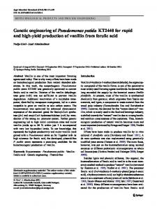 Genetic engineering of Pseudomonas putida KT2440 ... - Springer Link