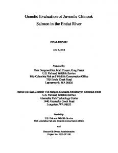 Genetic Evaluation of Juvenile Chinook Salmon in the Entiat River