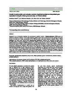 Genetic transformation and molecular analysis of ... - CiteSeerX