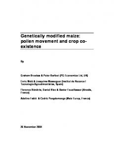 Genetically modified maize: pollen movement and ... - PG Economics