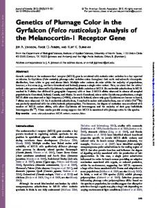 Genetics of Plumage Color in the Gyrfalcon - Semantic Scholar