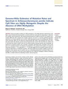 Genome-Wide Estimates of Mutation Rates and