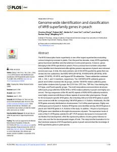 Genome-wide identification and classification of MYB ... - PLOS