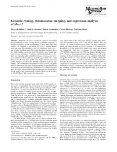 Genomic cloning, chromosomal mapping, and ... - Springer Link