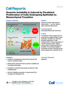 Genomic Instability Is Induced by Persistent Proliferation ... - Cell Press