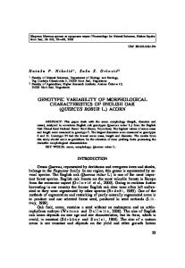 genotypic variability of morphological characteristics of ... - CORE
