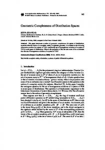 Geometric Completeness of Distribution Spaces - Springer Link