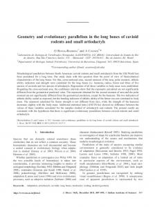 Geometry and evolutionary parallelism in the long bones of cavioid ...