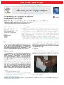 Giant fibroepithelial polyp of the perineum - International Journal of ...