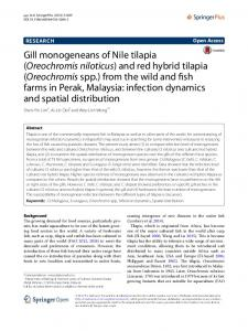 Gill monogeneans of Nile tilapia (Oreochromis niloticus) and red ...