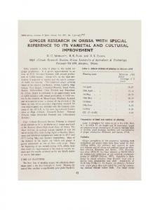 Ginger Research in Orissa