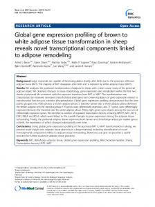 Global gene expression profiling of brown to white ... - CiteSeerX
