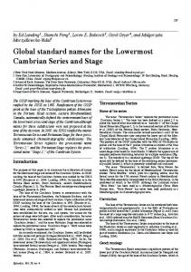 Global standard names for the Lowermost Cambrian Series and Stage
