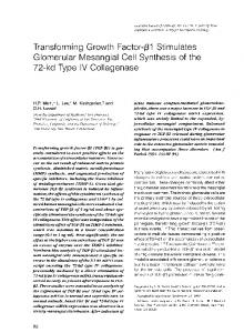 Glomerular Mesangial Cell Synthesis of the - Europe PMC