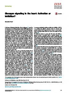 Glucagon signaling in the heart: Activation or inhibition?