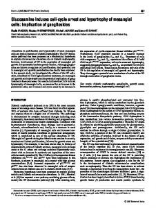 Glucosamine induces cell-cycle arrest and hypertrophy of mesangial ...