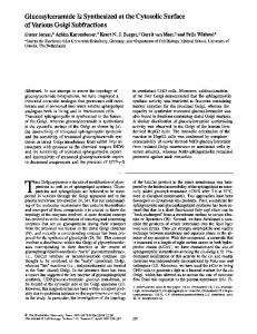 Glucosylceramide Is Synthesized at the Cytosolic ... - BioMedSearch