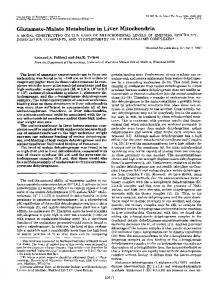 Glutamate-Malate Metabolism in Liver Mitochondria - The Journal of ...