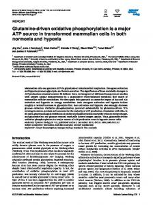 Glutamine-driven oxidative phosphorylation is a ... - BioMedSearch