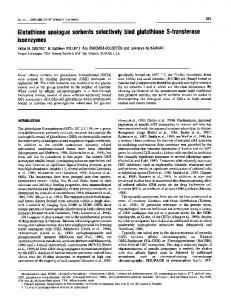 Glutathione analogue sorbents selectively bind glutathione S ... - NCBI