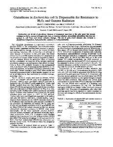 Glutathione in Escherichia coli Is Dispensable for Resistance to H202 ...