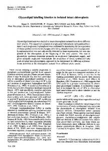 Glycerolipid labelling kinetics in isolated intact ... - Europe PMC
