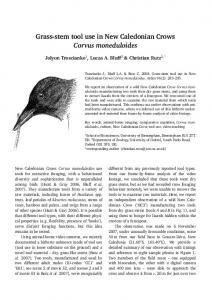 Grass-stem tool use in New Caledonian Crows Corvus ... - CiteSeerX