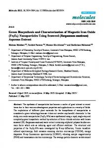 Green Biosynthesis and Characterization of Magnetic Iron Oxide - MDPI