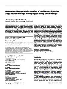 Groundwater flow systems in turbidites of the Northern ... - Springer Link