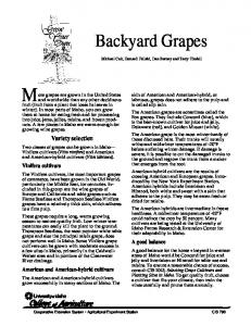 Grow Your Own Backyard Grapes - University of Idaho