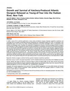 Growth and Survival of Hatchery-Produced Atlantic Sturgeon