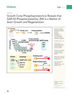 Growth Cone Phosphoproteomics Reveals that GAP-43 ... - Cell Press