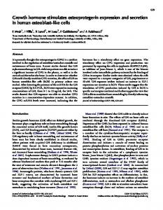 Growth hormone stimulates osteoprotegerin expression and secretion ...