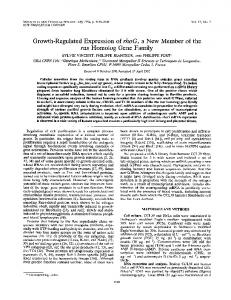 Growth-Regulated Expression of rhoG, a New Member of the