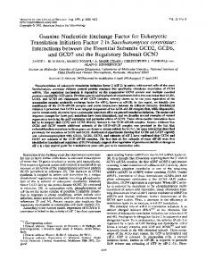 Guanine Nucleotide Exchange Factor for Eukaryotic Translation ...