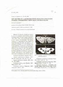 (GUENEE) (LEPIDOPTERA) FROM GREAT ...