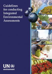 Guidelines for conducting Integrated Environmental