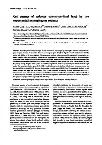 Gut passage of epigeous ectomycorrhizal fungi by two opportunistic ...