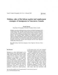 Habitus, rules of the labour market and employment strategies of ...