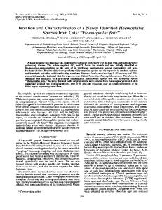 Haemophilus felis - Journal of Clinical Microbiology - American ...