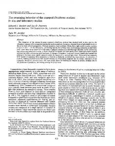 he swarming behavior of the copepod Dioithona ... - Wiley Online Library