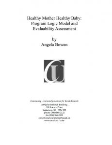 Healthy Mother Healthy Baby: Program Logic Model and ... - CUISR